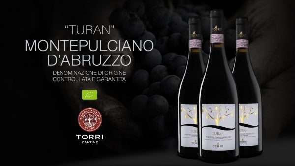 turan_montepulciano